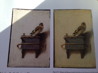 Carel Fabritius The Goldfinch (1654) before (right) and after (left) restoration The well-liked & respected (young) Fabritius was killed and most of his paintings burned when a nearby warehouse exploded