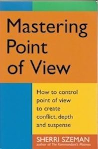 Mastering Point of View, 1st Edition, Story Press, 2001